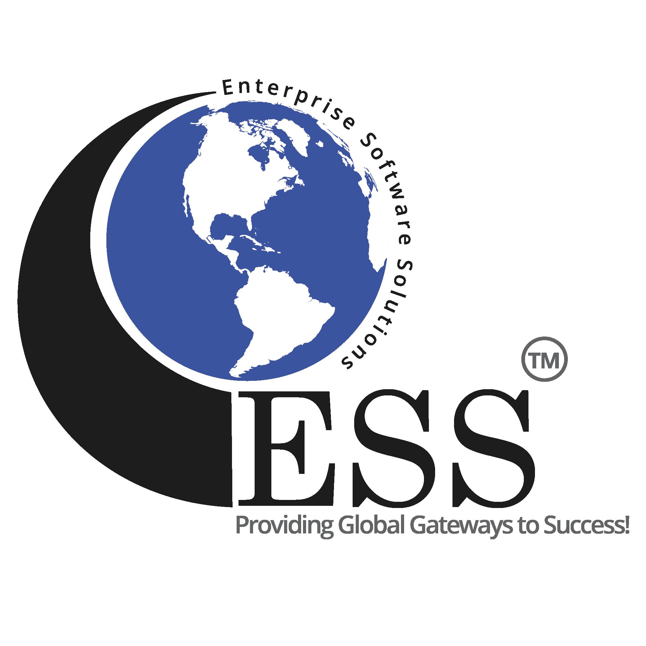 Enterprise Software Solutions Sticky Logo